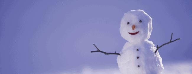 LSH blog - snow man