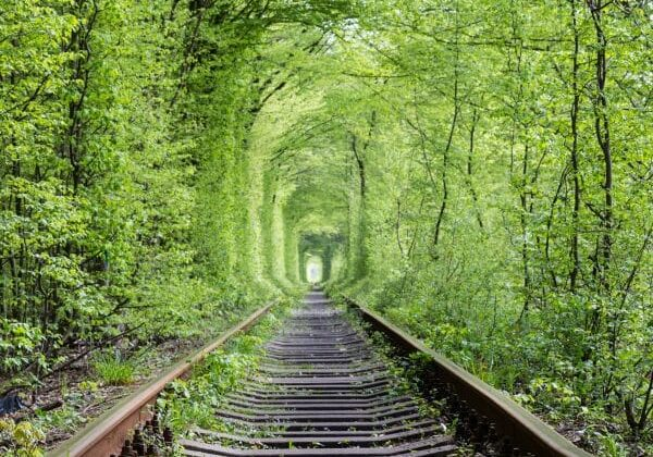 Tunnel of love. Natural miracle. The old abandoned railway line, in the alley of green trees. Tourist facility. Settlement Klevan. Rivnenskaya  region. Ukraine.